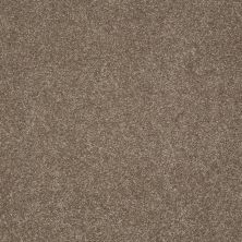 Shaw Floors Anso Colorwall Platinum Texture 12′ Iced Coffee 00723_EA572
