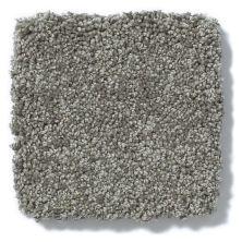 Shaw Floors Anso Colorwall Platinum Texture 12′ Venice Pier 00731_EA572