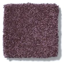 Shaw Floors Anso Colorwall Platinum Texture 12′ Kudu Berries 00933_EA572