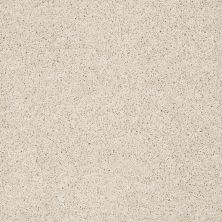 Shaw Floors Anso Colorwall Gold Twist Dunes 00123_EA575