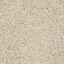 Shaw Floors Anso Colorwall Gold Twist Travertine 00702_EA575