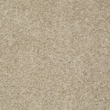 Shaw Floors Anso Colorwall Gold Twist Riverbank 00770_EA575