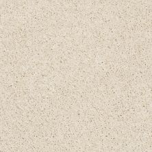 Shaw Floors Anso Colorwall Platinum Twist Fine China 00104_EA576