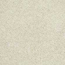 Shaw Floors Anso Colorwall Platinum Twist Cool Breeze 00106_EA576
