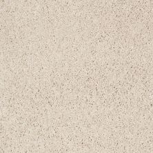 Shaw Floors Anso Colorwall Platinum Twist Pearl Glaze 00121_EA576