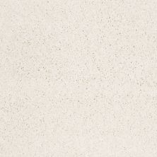 Shaw Floors Anso Colorwall Platinum Twist Snow Cap 00122_EA576