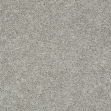 Shaw Floors Anso Colorwall Platinum Twist Elephant Gray 00534_EA576