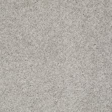Shaw Floors Anso Colorwall Platinum Twist When In Rome 00536_EA576