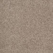 Shaw Floors Anso Colorwall Platinum Twist Warm Oatmeal 00722_EA576
