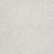 Shaw Floors Anso Colorwall Platinum Texture Tonal Aspen 00190_EA579
