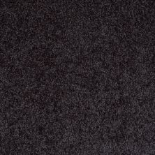 Shaw Floors SFA Dakota Springs Nightfall Navy 00450_EA604