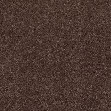 Shaw Floors SFA Look Forward Maple 00707_EA605