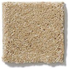 Shaw Floors SFA Sand Castle 00122_EA636