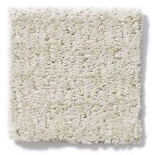 Shaw Floors SFA Snow Cream 00103_EA641