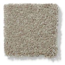 Shaw Floors SFA Glisten III Rye 00702_EA661