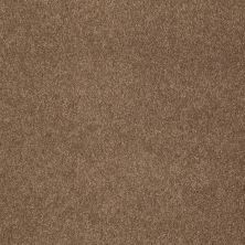 Shaw Floors SFA Unparalleled Delight I Brownie 00708_EA662