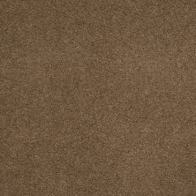 Shaw Floors SFA Unparalleled Delight III 12′ Brownie 00708_EA664