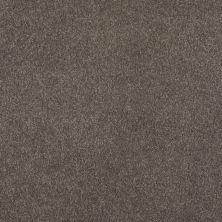 Shaw Floors SFA Unparalleled Delight III 12′ Riverbed 00713_EA664
