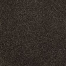Shaw Floors SFA Unparalleled Delight III 12′ Tuxedo 00714_EA664