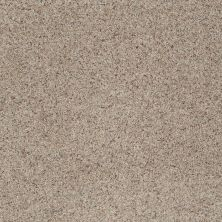 Shaw Floors SFA Rare Bliss II Timber 00752_EA666