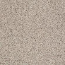 Shaw Floors SFA Rare Bliss III Pebble 00751_EA667