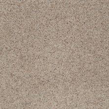 Shaw Floors SFA Rare Bliss III Timber 00752_EA667