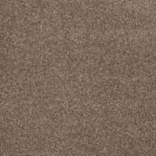 Shaw Floors SFA Sweet Choice (s) Rustic Luxury 00724_EA672