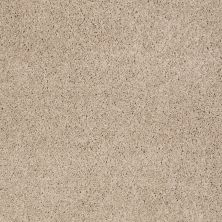 Shaw Floors SFA Source II Ice Coffee 00763_EA682