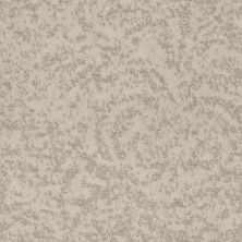 Shaw Floors SFA Natural Space Damask 00102_EA684