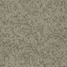 Shaw Floors SFA Natural Space Silver Sage 00300_EA684