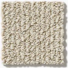 Shaw Floors Simply The Best Vibrant Powder E9345_00100