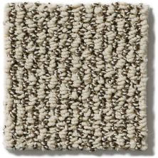 Shaw Floors Simply The Best Vibrant Sand E9345_00106