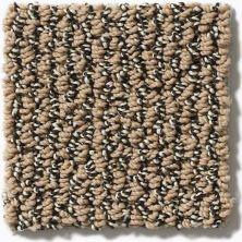 Shaw Floors Simply The Best Vibrant Prairie E9345_00701