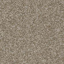 Shaw Floors SFA Composure Travertine 00101_EA689