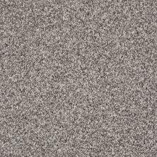 Shaw Floors SFA Composure Fog 00500_EA689