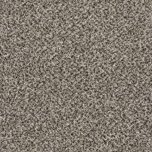 Shaw Floors SFA Composure Whisper 00501_EA689