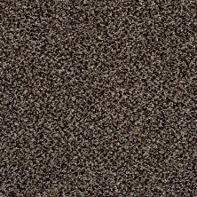 Shaw Floors SFA Composure Soulful Taupe 00701_EA689