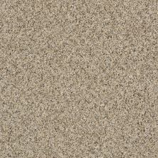 Shaw Floors SFA Nature Essence Colonial Cream 00102_EA692
