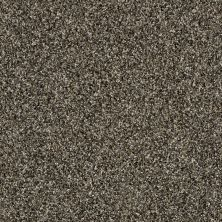 Shaw Floors SFA Nature Essence Fossil 00502_EA692