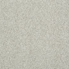 Shaw Floors SFA Infallible Porcelain 00101_EA693