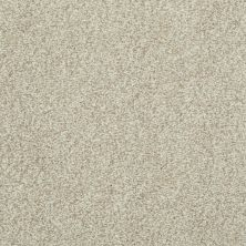 Shaw Floors Simply The Best Infallible Bamboo 00103_EA693