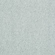 Shaw Floors Simply The Best Infallible Silver Glitz 00500_EA693