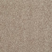 Shaw Floors SFA Infallible Camel 00700_EA693