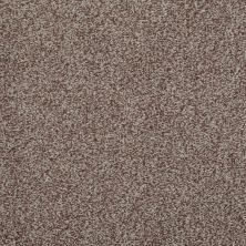 Shaw Floors Simply The Best Infallible Pecan 00701_EA693