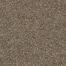 Shaw Floors Foundations Sense Of Reflection Quarry 00722_EA698