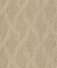 Shaw Floors SFA Free Spirited Arbor 00200_EA702