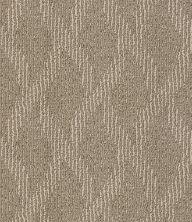 Shaw Floors SFA Free Spirited Penthouse 00700_EA702
