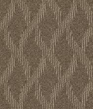 Shaw Floors SFA Free Spirited Branches 00701_EA702