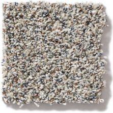 Shaw Floors SFA Confetti 00100_EA705