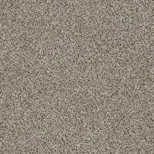 Shaw Floors SFA Iconic Element Adobe 00101_EA708